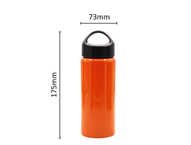 Screw Type Stainless Steel Insulated Vacuum Water Bottle with Leak-Proof Lid