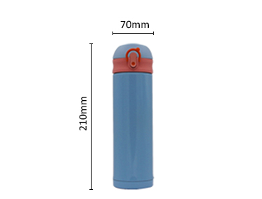 Double Wall Vacuum Stainless Steel Leak Proof Sports Water Bottle