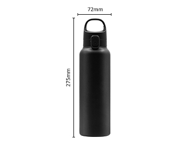 Autospout Insulated Stainless Steel Carry Clip Sports Bottle