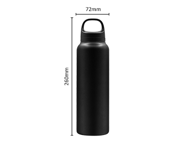 Insulated Stainless steel Sports Water Bottle with SS Tea Strainer