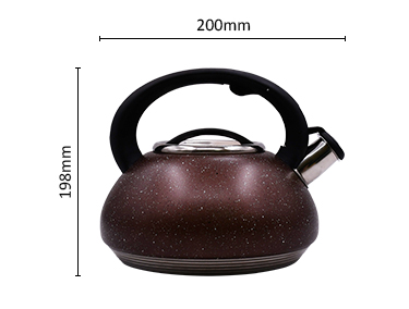Ricool Premium Quality 3L Stainless Steel Whistling Tea Kettle